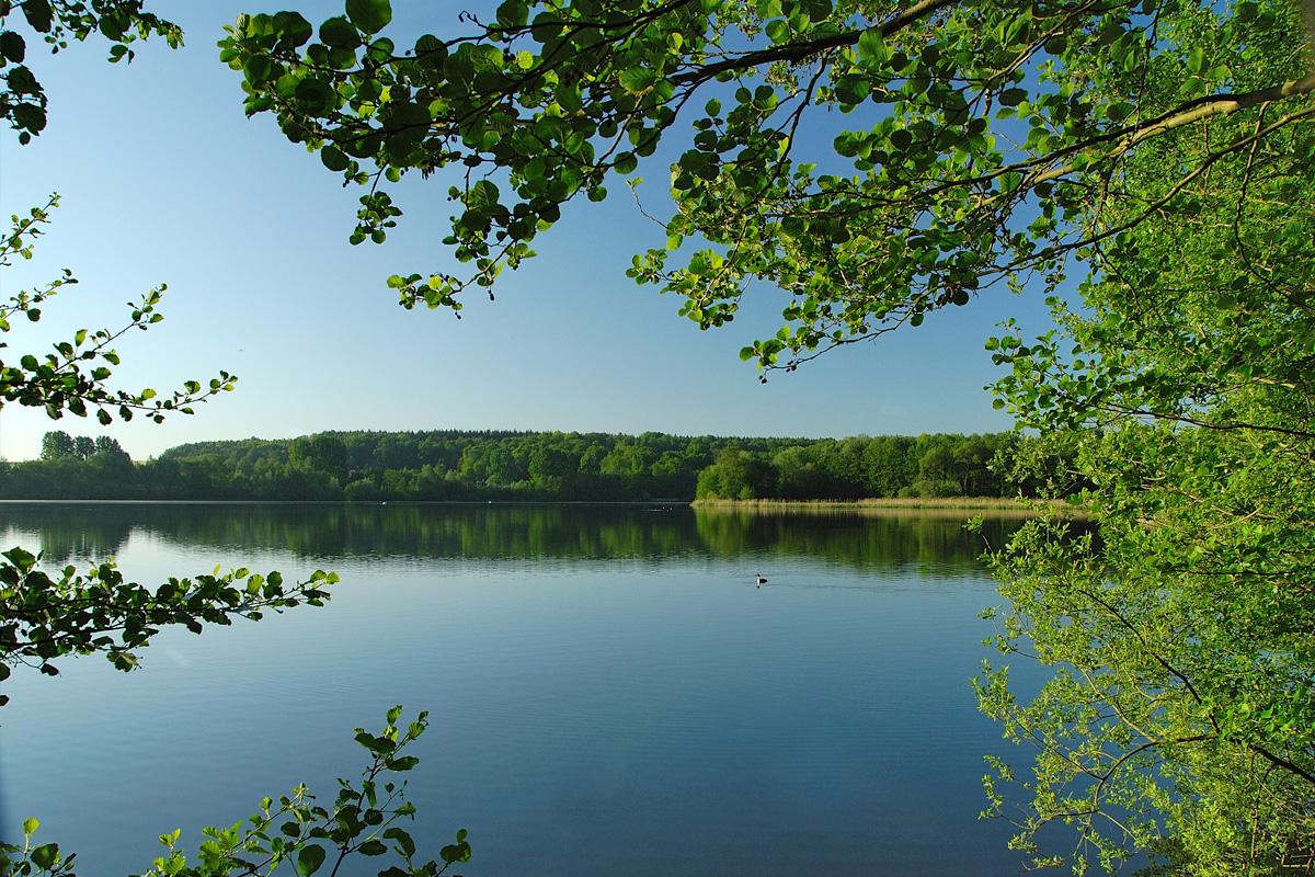 Bambois-lac